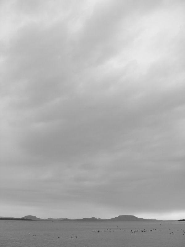 Cikkek képei: sob-2017-fodorattila-01.jpg